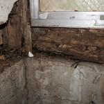 室内フルリフォームパック企画 ビフォー動画公開中! 白蟻発生現場