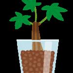不動産投資のリスクから考える成功術 『お金のなる木を育てる方法』(^◇^)