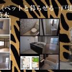 『大阪狭山市茱萸木』≪ペットと暮らせるリノベーションハウス≫