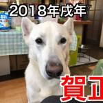 2018年度もよろしくお願い致します。