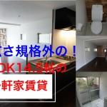 【室内動画公開】LDKの広さ規格外14.5帖一軒家賃貸 堺市中区土師 駐車場付 3LDK