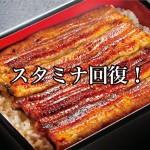 ランキング記事!土用の丑の日に食べたいスタミナのつく食べ物!Best3