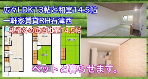 20180924_061953424_iOS