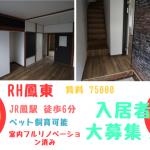 堺市西区JR鳳駅徒歩6分 🎀LDK13帖!フルリノベーション済み!ペットと暮せる一軒家賃貸