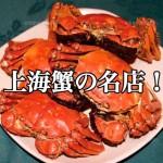【不動産業者オススメの孤独なグルメ】大阪北浜『中国菜 火ノ鳥』
