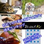 1月13日週末【初めての不動産投資マガジン】ピックアップランキング!