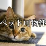 身近な疑問!ペット不可の賃貸物件、どの動物なら許される?-第1回-