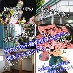 3月3日週末【初めての不動産投資マガジン】ピックアップランキング!